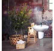 Tvättställ Gustavsberg Estetic 410350 C+